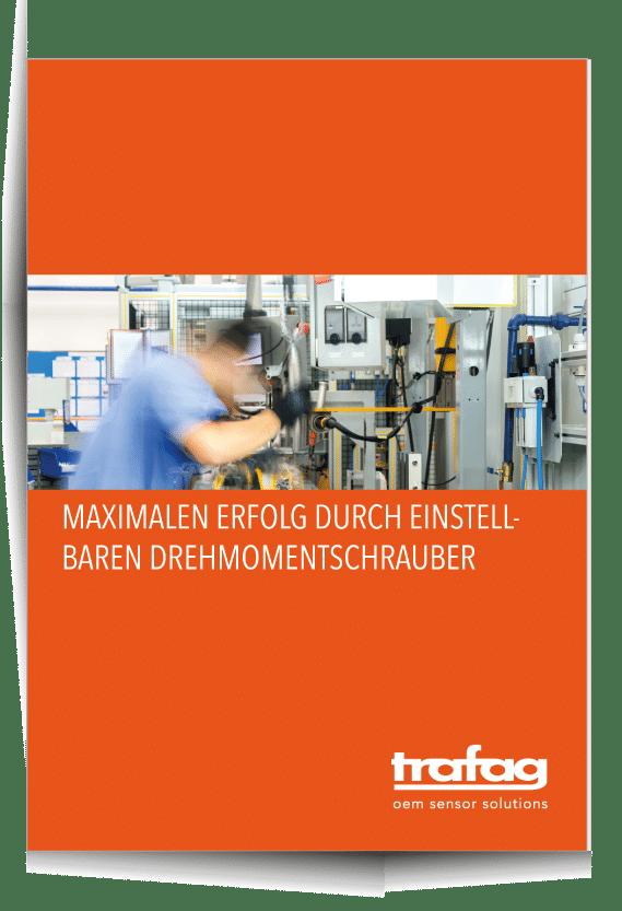 Reines-PDF-Cover-mit-Schatten