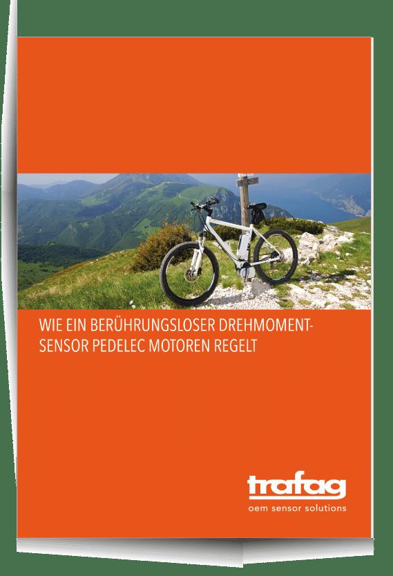 Reines-PDF-Cover-mit-Schatten-Drehmomentsensor-im-Pedelec