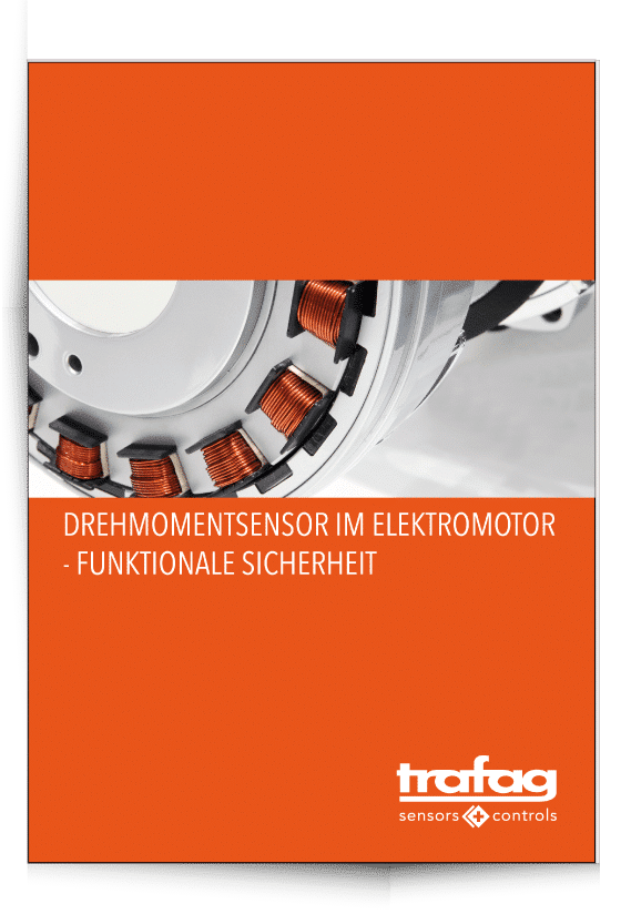 Reines-PDF-Cover-mit-Schatten-Elektromotor
