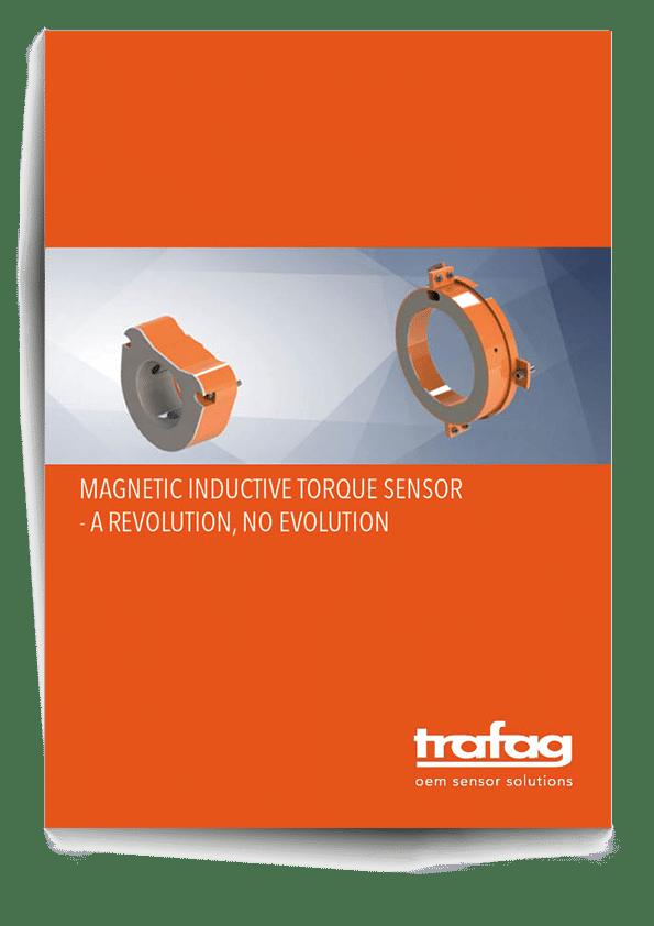 magnetic--inductive-torque-sensor-Cover-Schatten