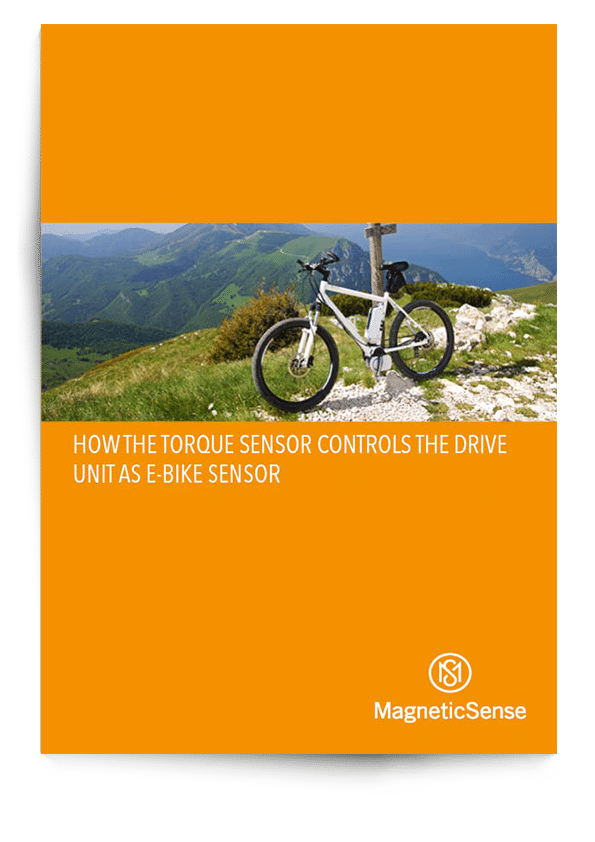 Cover Ebook Ebike (EN)