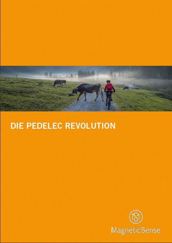 Pedelec(DE)