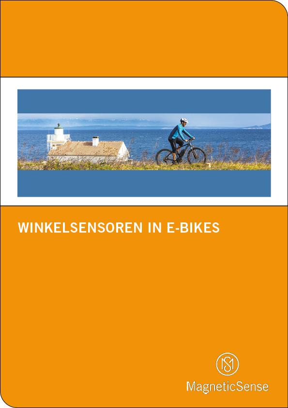Winkelsensor(DE)